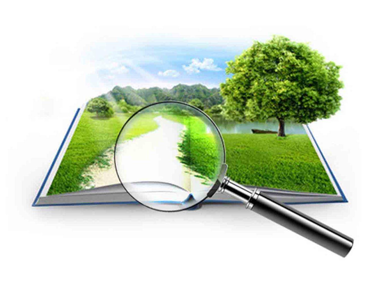 Независимая оценка земельного участка с отчетом эксперта